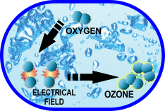 Ozone Water Cycle